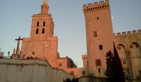 Les Tamaris Le Palais des Papes
