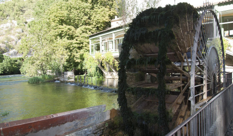 Les Tamaris La Fontaine du Vaucluse