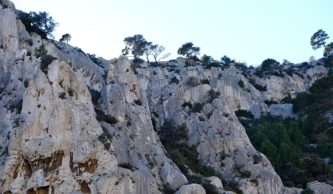 Les Tamaris Calanques