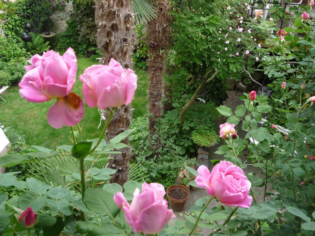 Les Tamaris jardins fleuris